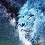 22 Frases de Astrología y Numerología