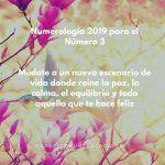 Año 2019 Para El Número 3