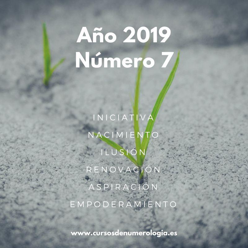 año numerológico 2019 para el número 7